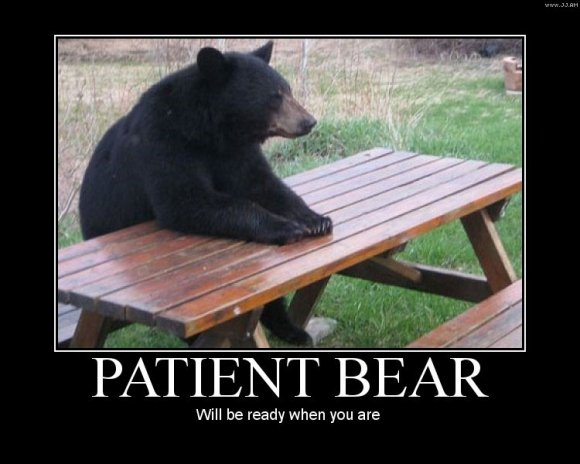 Patient Bear. He is good to go... when ever your ready..