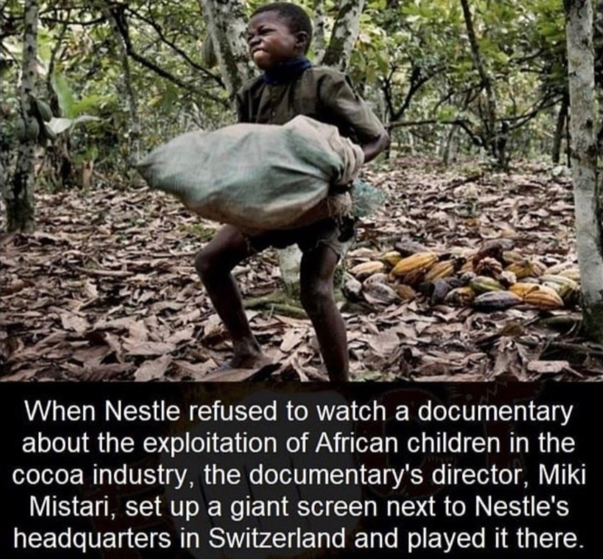 staking Dunlin. .. Nestle executives laughing as they get to watch African children struggle while they eat chocolate and drink their tasting water Comment edited at .