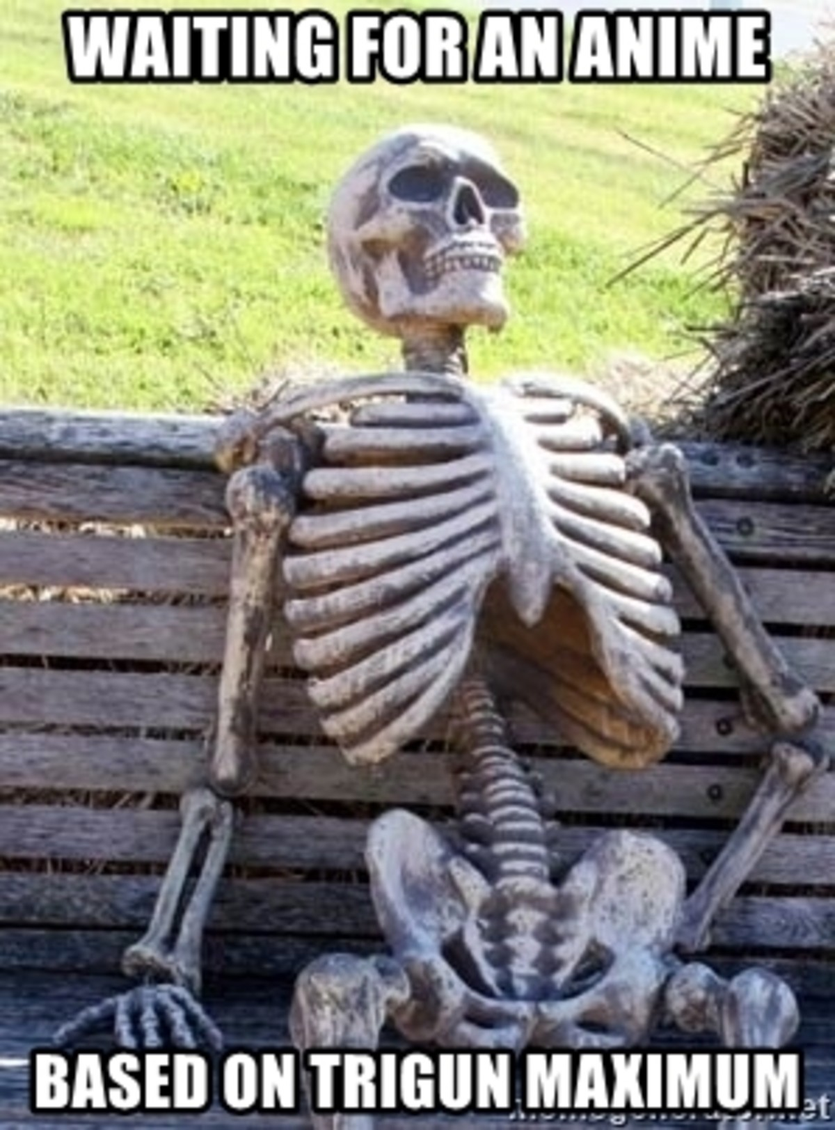 Still Waiting. .. In a land of so many mediocre adaptations of the same light novel with a thesis statement for a title I just want TWO anime adaptions from older materials. Guns