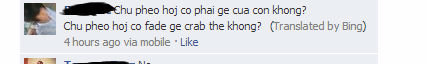 thanks bing. What does it mean? We'll never know.. HM pheh ho) co phai we con Wang? Chu men had can fade crab the Wang? {Translated by Bing) it hours we via mob