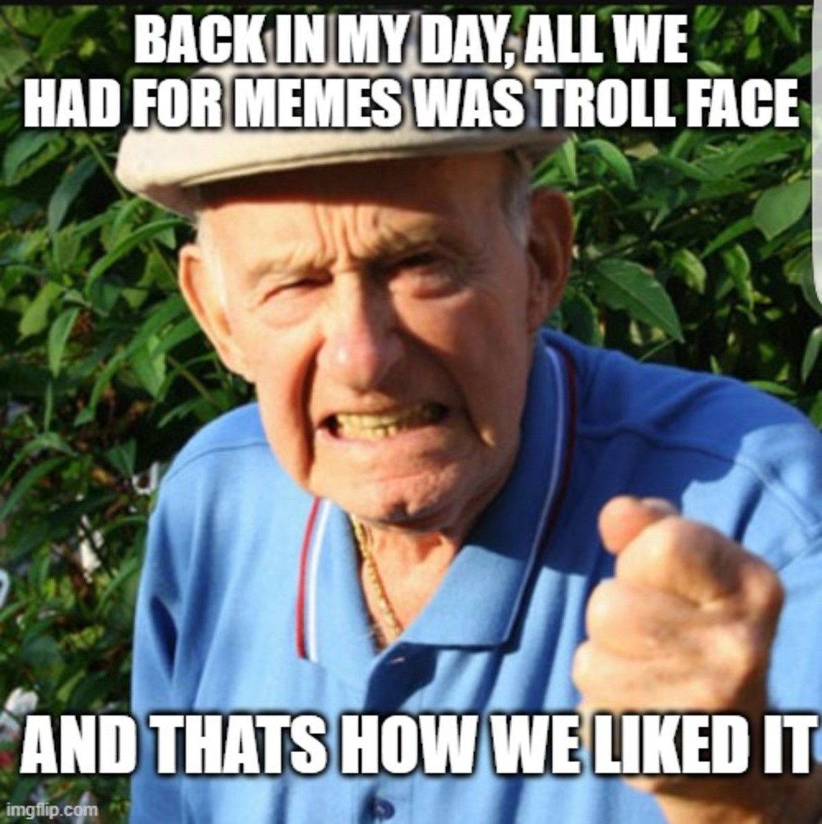 the good old days. .. We always had 100s of memes, even before trollface