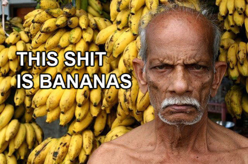This is bananas. .. only banana related picture i had.
