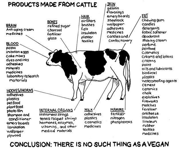 "Vegans Don't Exist. Bacon.. PRODUCTS MADE F ROM CATTLE EH. gelatin gar! Mantis Bit Hath then' M EM Mbs wallpaper"" wank slut' -uni may cream u: yhe: -sills deter"