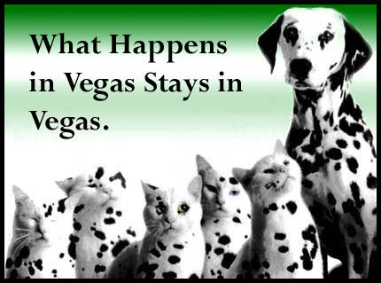 What Happens In Vegas, Stays In Vegas!. .. i rofl on your lulz