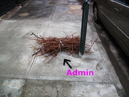 you know it. admin.. It's spelled fagot.