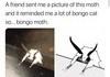 Bongo Moth