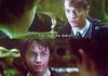 Bridesmaid Potter