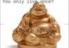 Buddha Level: 9001