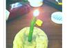 Broke College Student Birthday