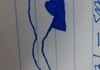 Biology doodles