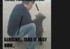 Brutal Baby-Bear Attack
