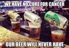Beer Brilliance