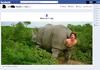 Born a rhino