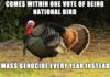 Bad luck Turkey