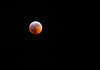Blood moon 1-21-2019