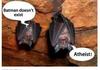 Bat'em