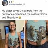 Saved squirrels